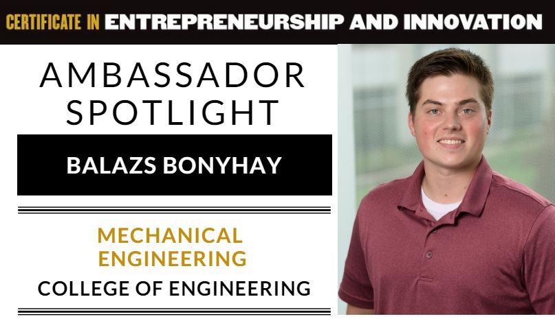 Balazs Bonyhay