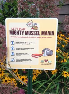 Mighty Mussel Mania game