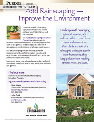 Rainscaping Flyer