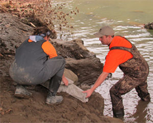 Scientists placing hellbender concrete nest box in water.