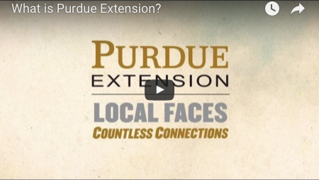 What is Extension video