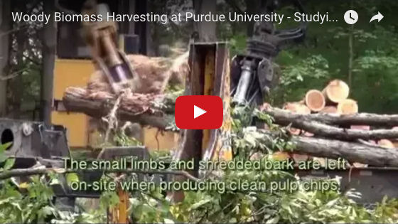 Woody Biomass Harvesting video