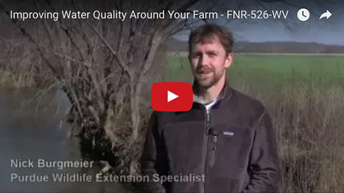 Improving Water Quality Around Your Farm
