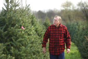 Dr. Dan Cassens-Christmas Tree Farm