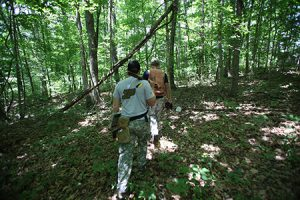 Forest, Purdue foresters