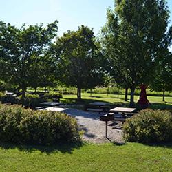 Purdue University Pickett Park landscape