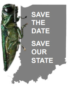 Early Detector Training Workshops, Save the Date logo