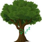 Drawing of sleeping tree, pixabay.com