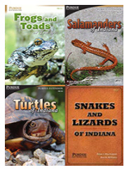 Indiana Amphibian and Reptile ID Package