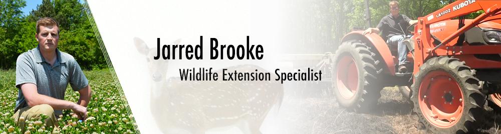 Staff Spotlight: Jarred Brooke
