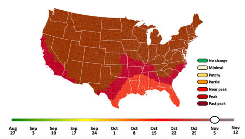 Fall foliage prediction act, smokymountains.com.