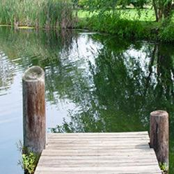 dock on a pond