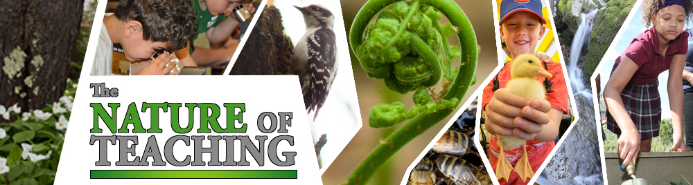 Nature of Teaching Banner