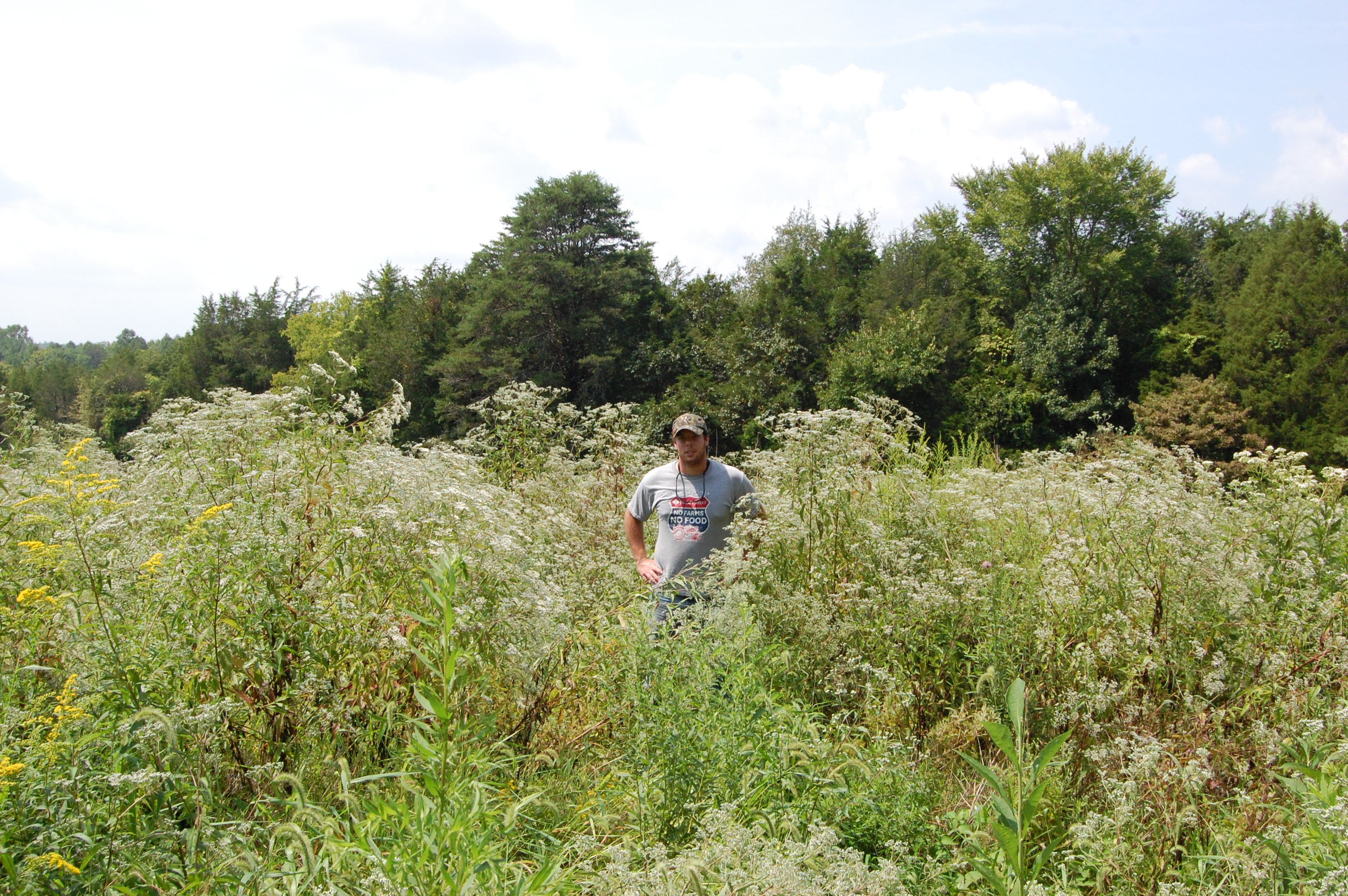 GOT NATURE? BLOG   Purdue Extension Forestry & Natural Resources