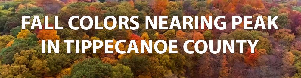 FALL COLORS NEARING PEAK IN TIPPECANOE COUNTY