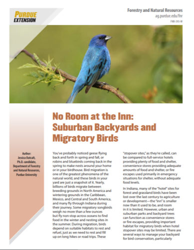 Extension publication, No Room at the Inn: Suburban Backyards and Migratory Birds