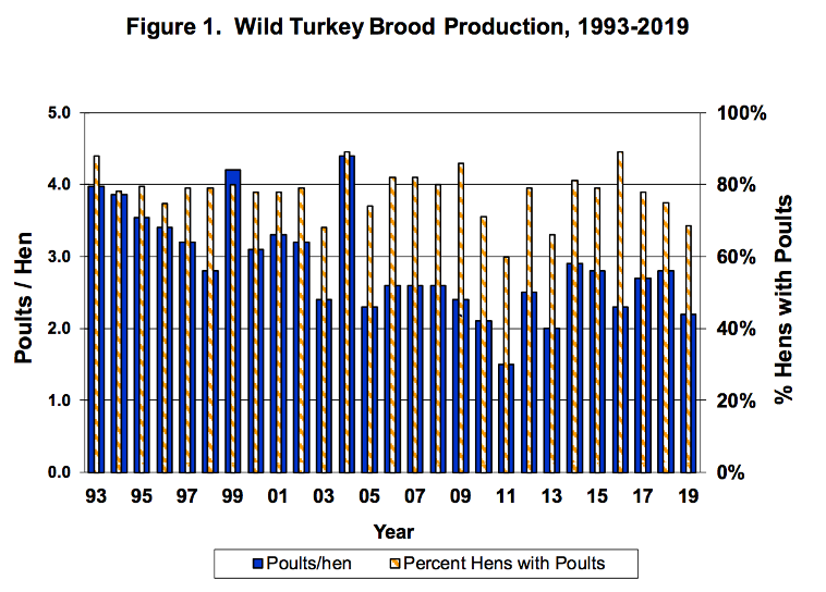 Wild Turkey Brood Production 1993-2019
