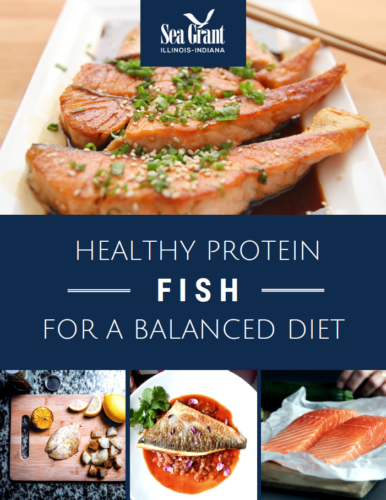Fish-Healthy Protein For a Balanced Diet Handout