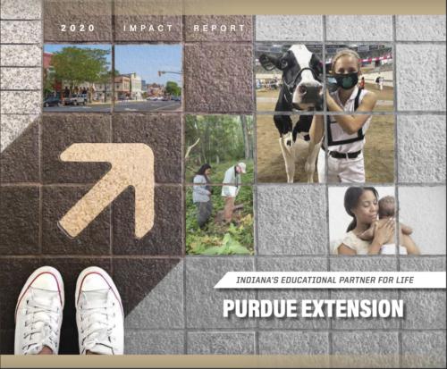 PurdueExt2020ImpactReport
