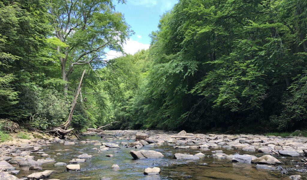 Pennsylvania Stream