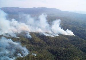 prescribed fire in the mountains