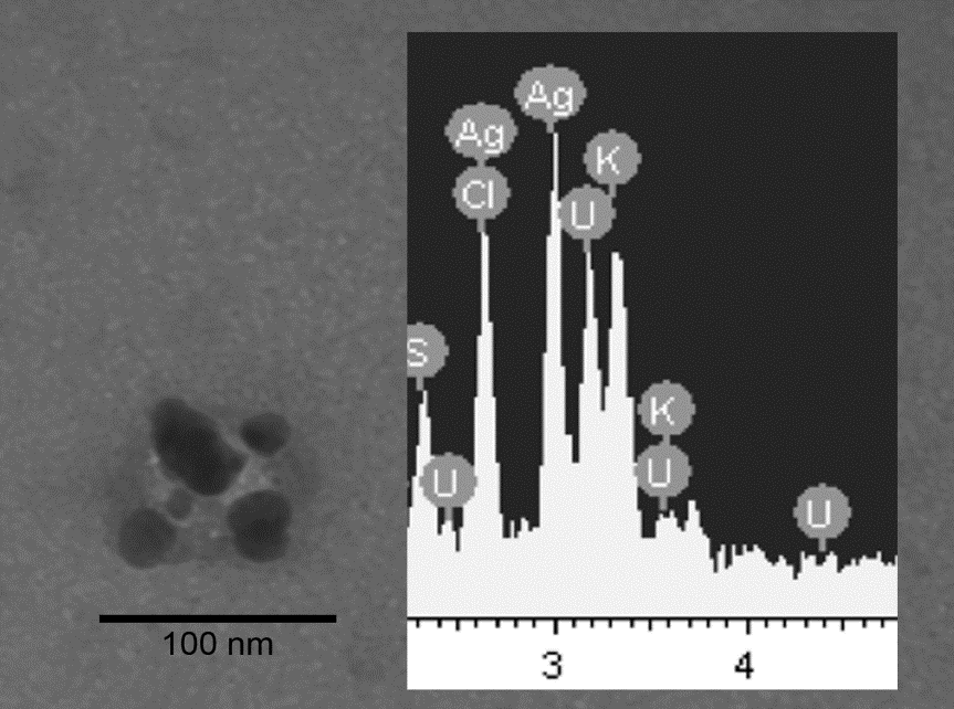 Silver nano particles from socks