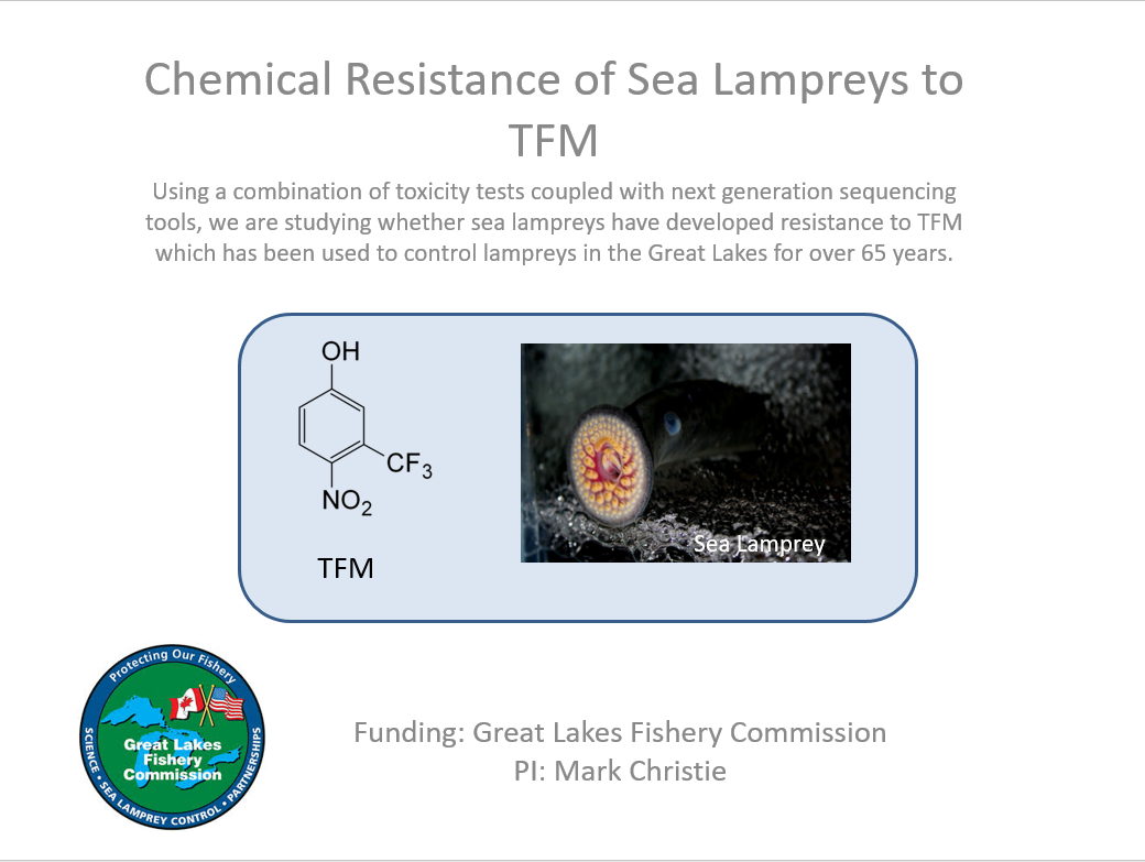 Chemical Resistance of Sea Lampreys to TFM