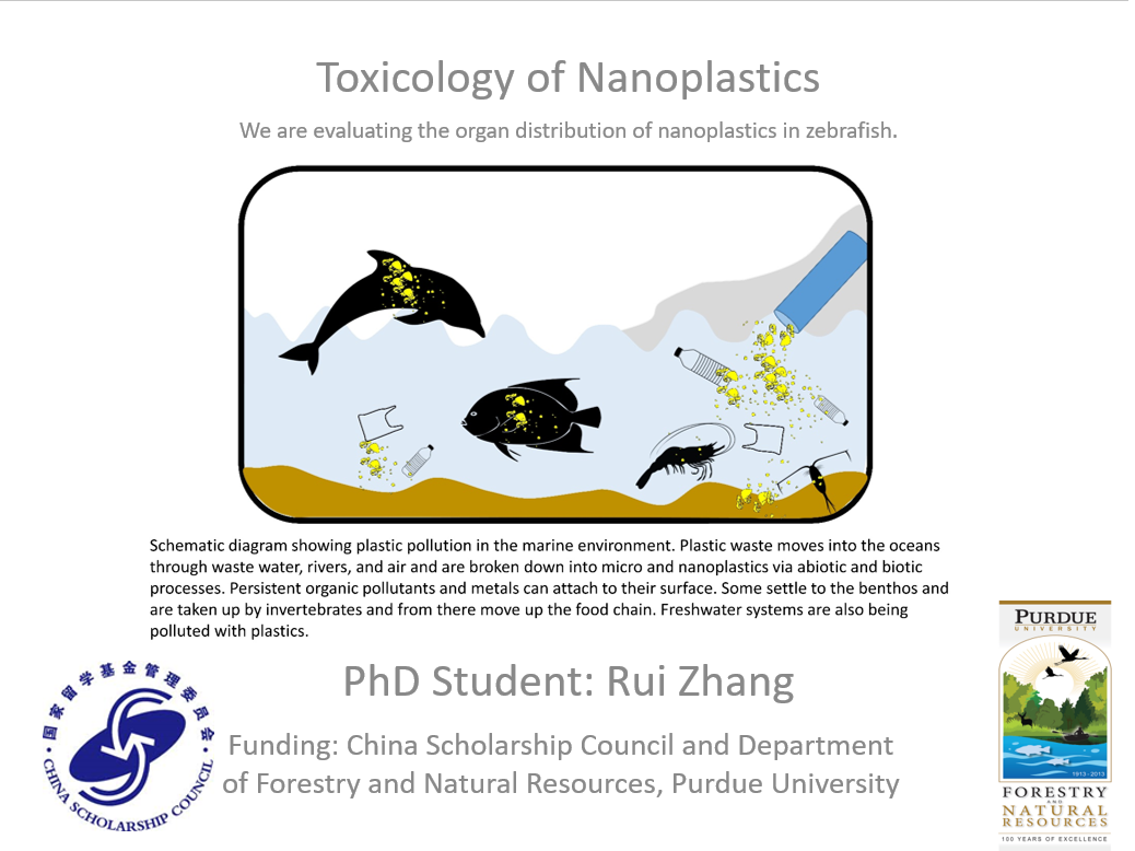 Toxicology of Nanoplastics