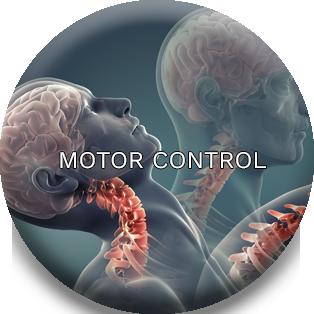 Motor Control Photo