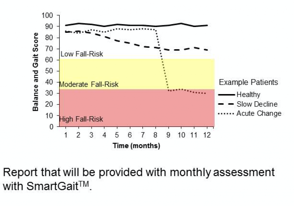 Report that will be provided with monthly assessment with SmartGait.