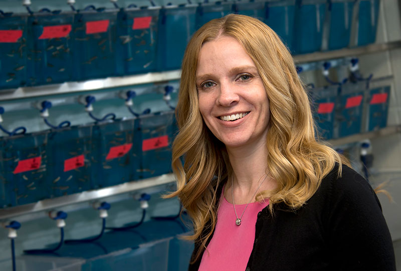 Jennifer Freeman, associate professor of health sciences