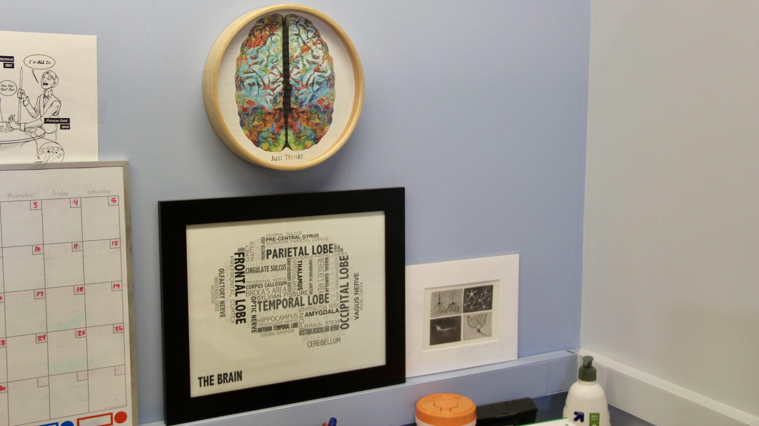 a brain clock and word cloud shaped like a brain