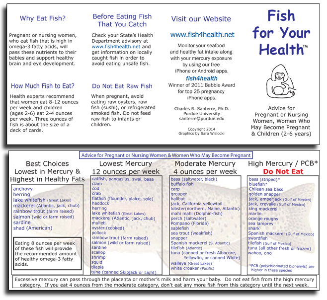 Safe fish for pregnancy all the best fish in 2018 for Safe fish during pregnancy