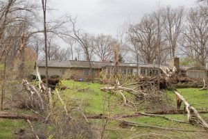 Photo of storm damaged, fallen trees in the yard of a house. Caption reads, Purdue Extension resources help homeowners cope with storm-damaged trees.