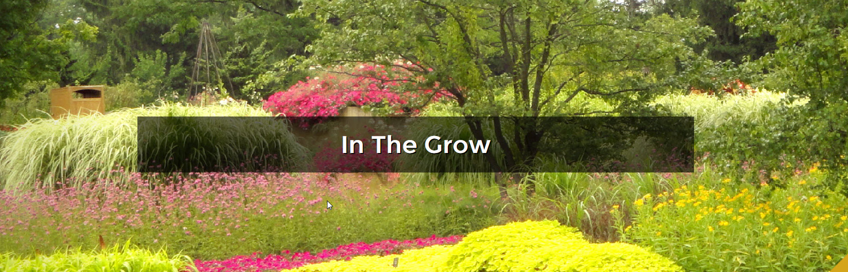 In The Grow Header Image of a Garden showing trees and assorted flowers