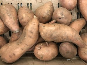 Image of a bin of harvested sweet potato roots showing various sizes/shapes.