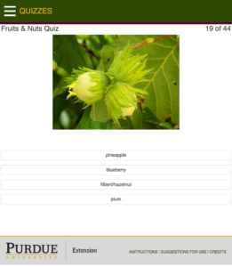 screenshot from app of a Fruits & Nuts Quiz question