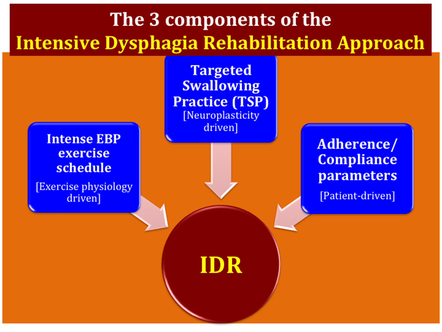 The components of the IDR approach developed by Dr. Malandraki