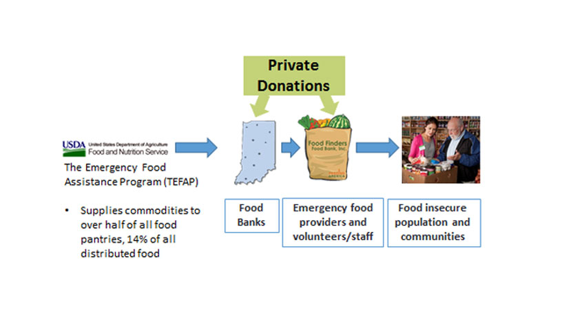 The Emergency Food Assistance Network