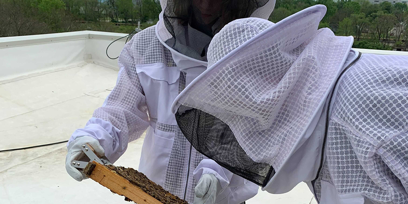 PPHS students in beekeeping suits