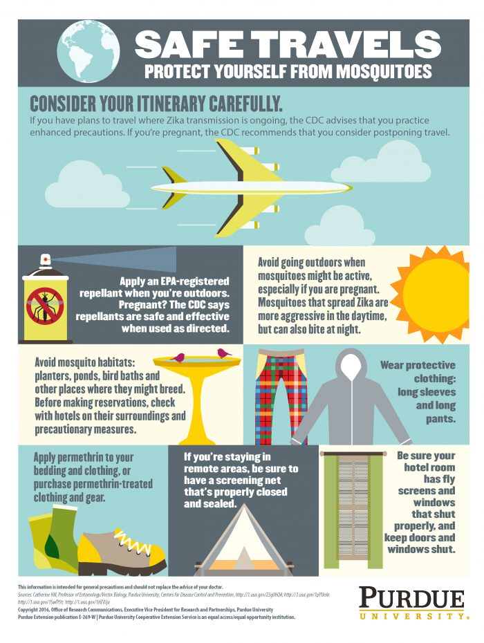 Safe travels infographic