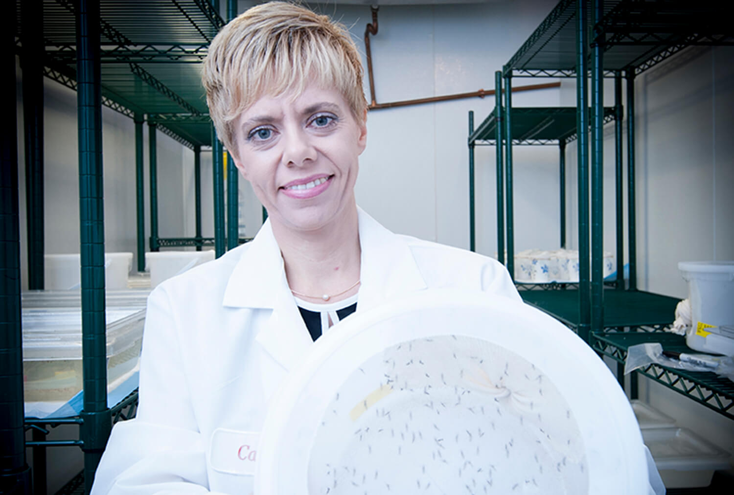 Catherine Hll holding a container of mosquitoes