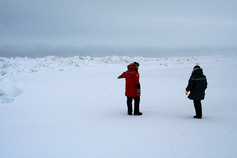 Students on tundra