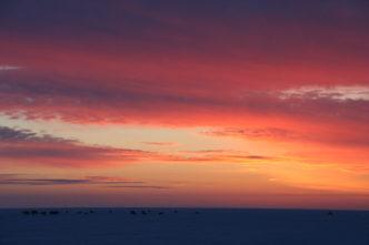 polar sunrise