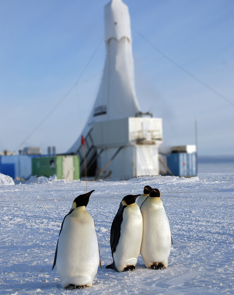 penguins in front of drill
