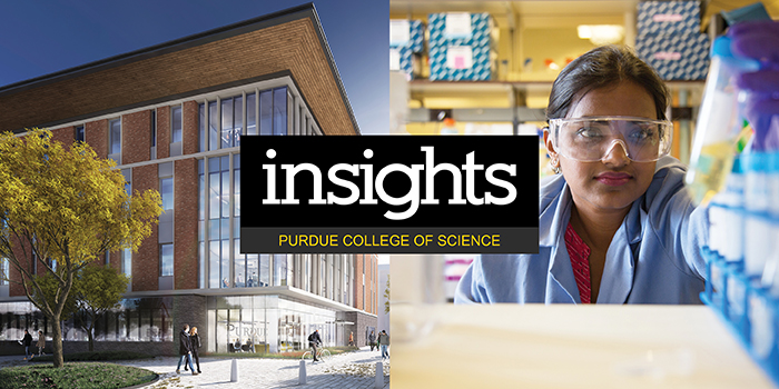 Website banner for the fall 2018 issue of Insights magazine online