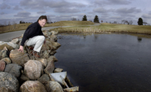 Turco wetlands