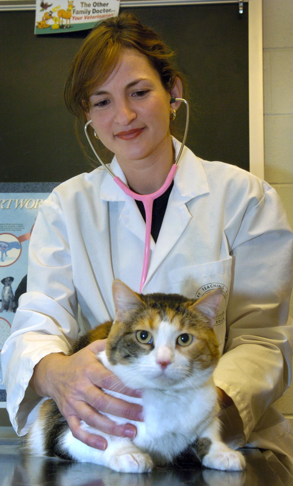 Ponce School Of Medicine >> Purdue Vet School starts program for Spanish-speaking pet ...