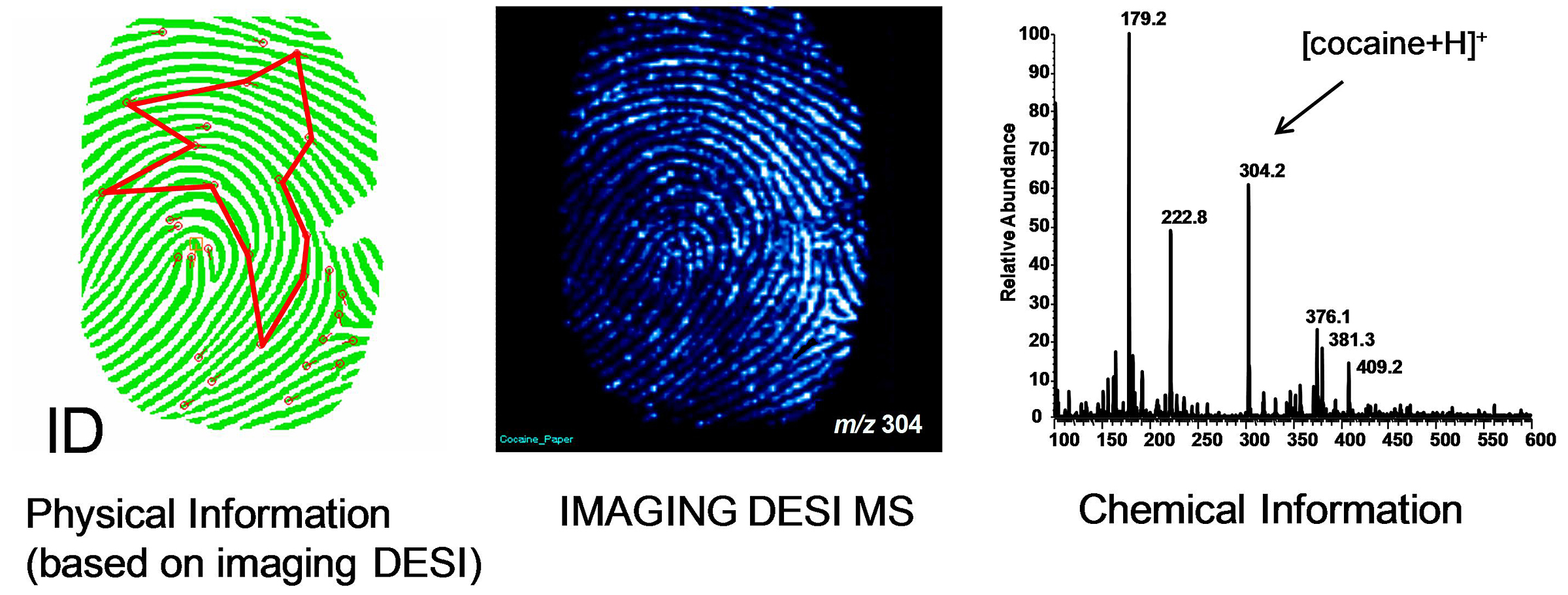 Fingerprints provide clues to more than just identity