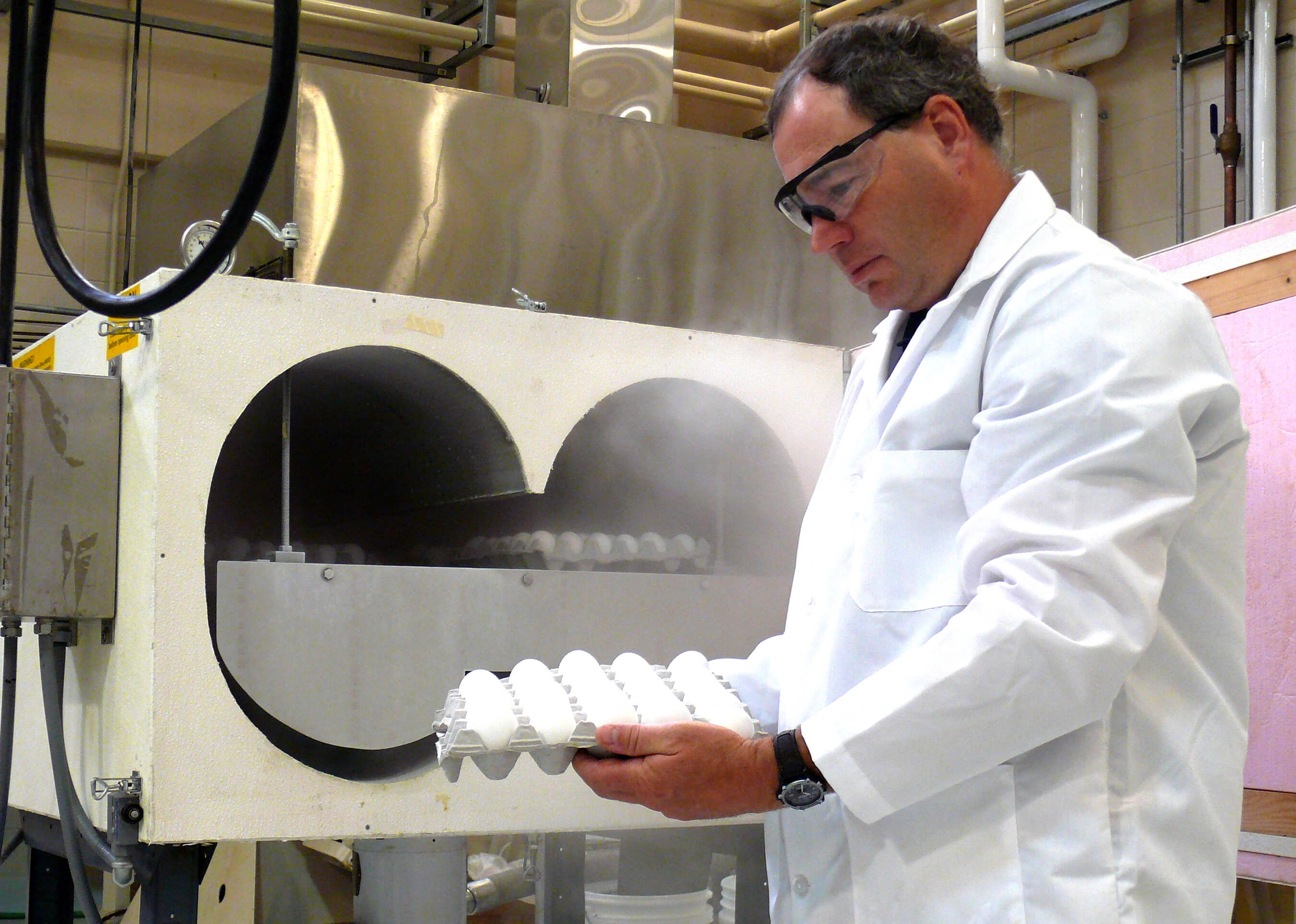 Rapidly cooling eggs can double shelf life, decrease risk of illness